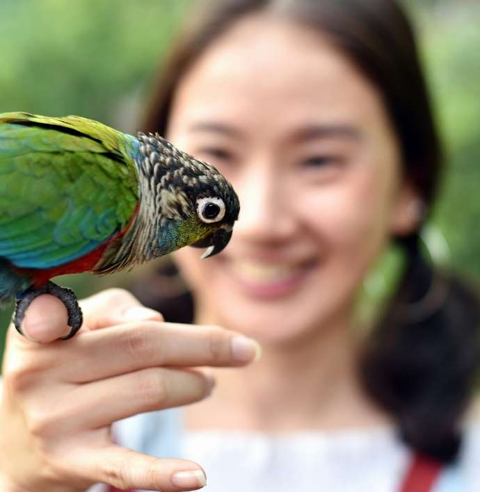 Dating-for-animal-lovers-bird
