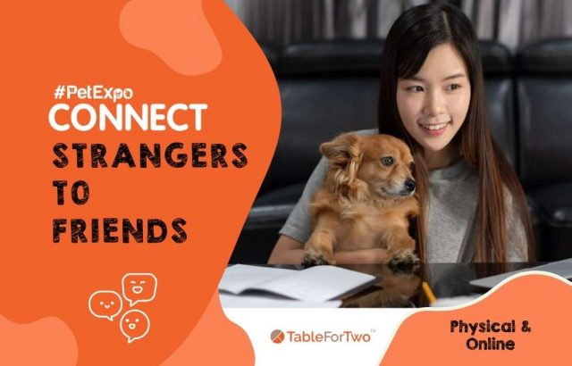 strangers to friends pet expo connect